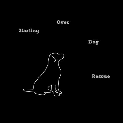 Starting over dog rescue 488ab525 3d83 451d a337 36743b88f8f9. 8aeb9b57 11c4 4995 865a b8fc3c97252c 10f158fc 8f8a 496d 95e7 96f0a0b83fe4