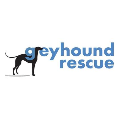 Freyhound rescue 5c00a1f2 5232 4d54 bb97 085c654af23f. 23ab76dd 63b6 4ee6 955f d08efaba555f 9e55dbed f52e 4b75 8473 a1635166850a