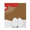 Chicken egg icon 100x100 804cf79b 3a8d 480d ab2c 41e4eb0c91c8